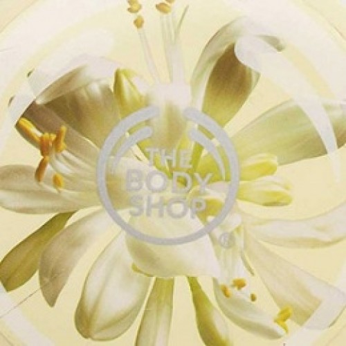 모링가MoringaThe Bodyshop Type